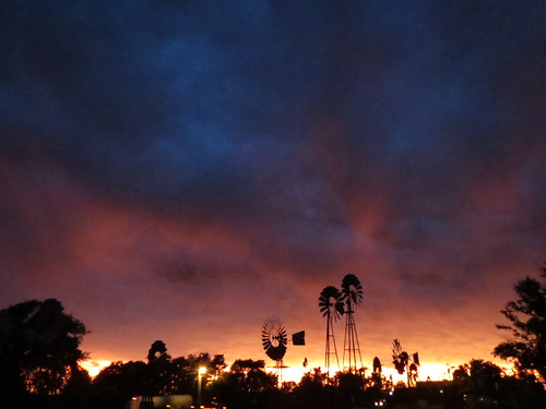 Z Crew: A Farewell Sunset