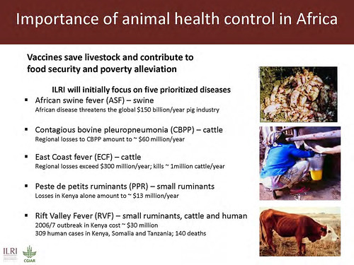 Importance of animal health in Africa