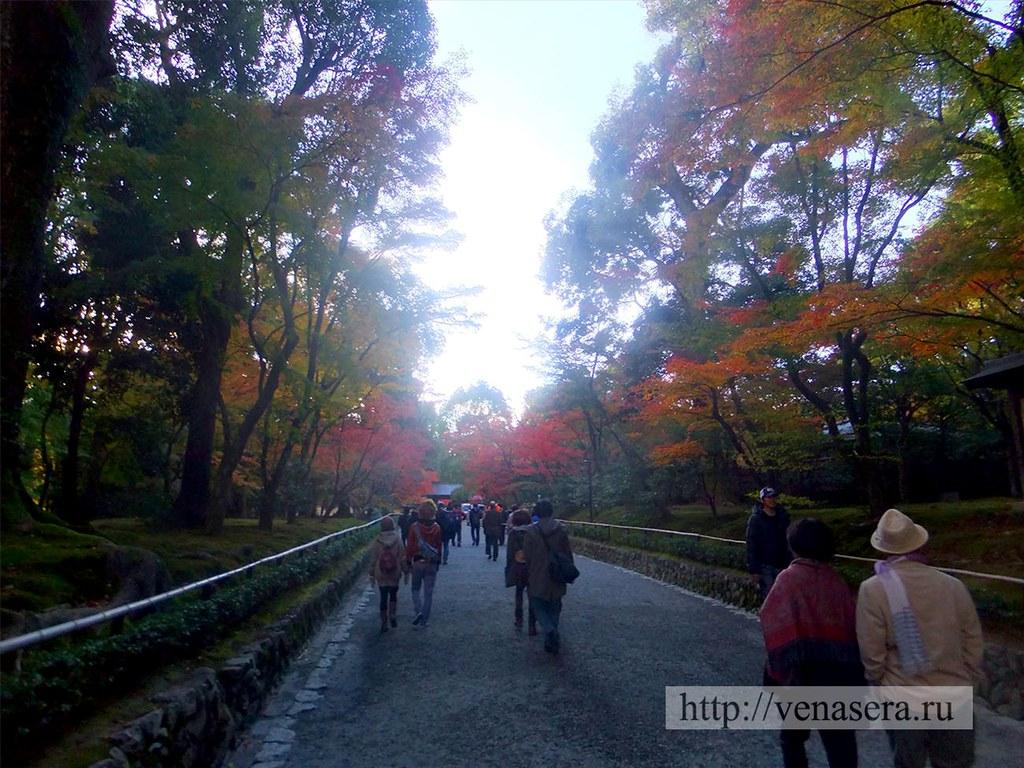 На территории храма Кинкакудзи