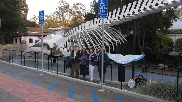 IMG_4165 whale at santa barbara museum of natural history Doyle