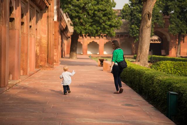 Agra and Fatehpur Sikri-11