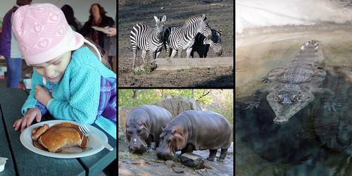zoo_2013