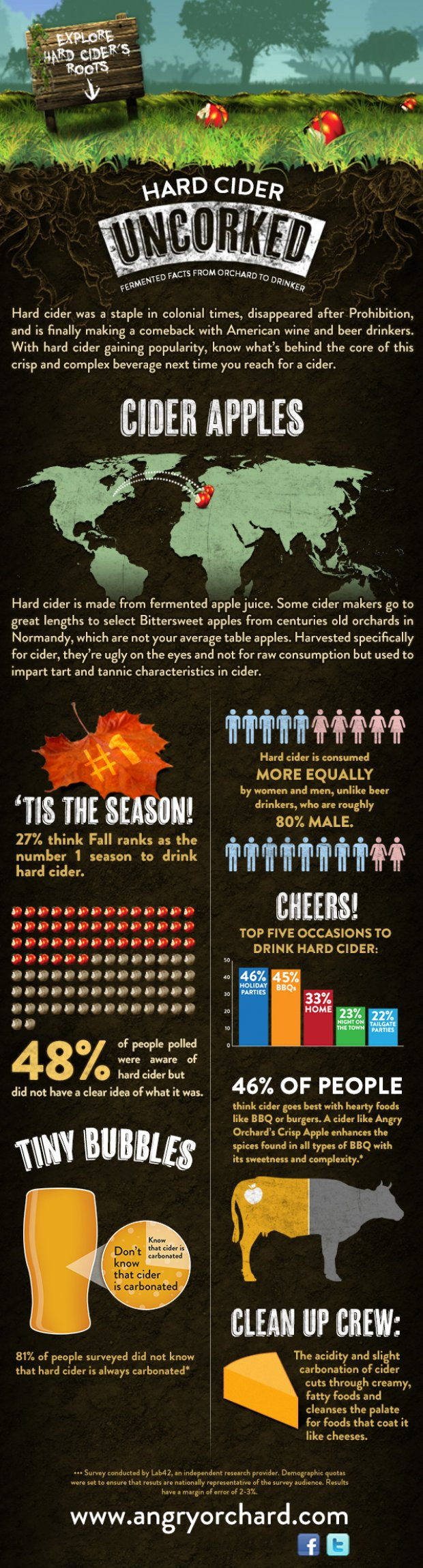 Cider_infographic