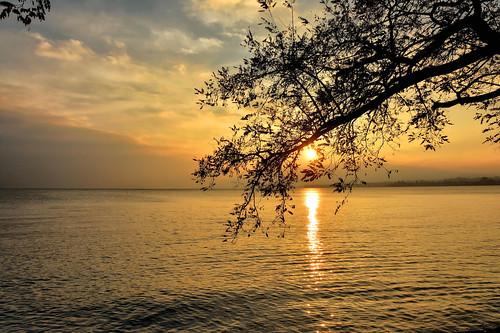 sunset soleil eau day cloudy couleurs silhouettes lac paysages couchant ombres préverenges