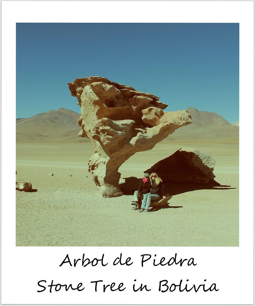 polaroid bolivia arbol de piedra