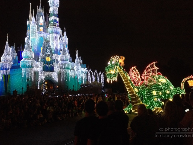Electric Lights Parade 2