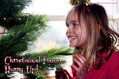 Christmas time, Hurry Up