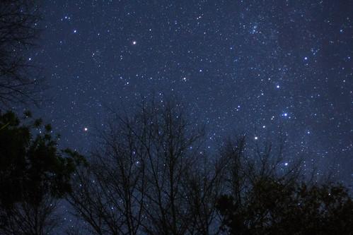 星に願いを、あなたに祈りを