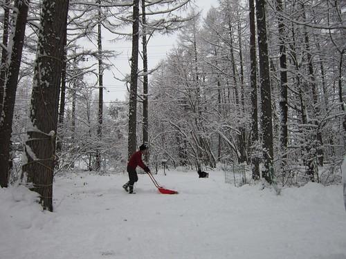 初の雪掻き 2013年12月19日9:22 by Poran111