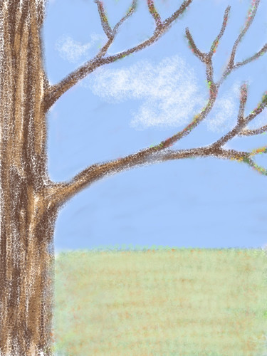 Tree Branches All Year (Digital Sketch) by randubnick