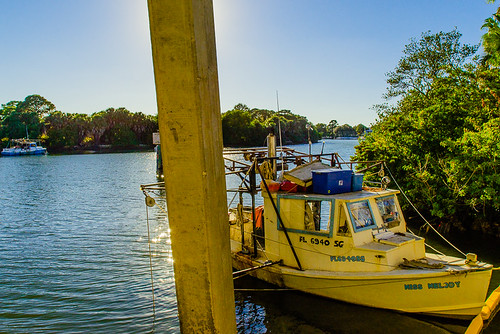 Shrimp Boats Moored Along the Mangroves, St. Petersburg, Florida