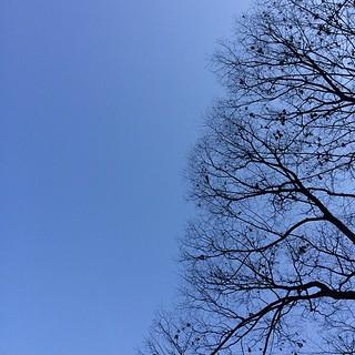 快晴 #sky #イマソラ