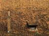 Roof by Batikart