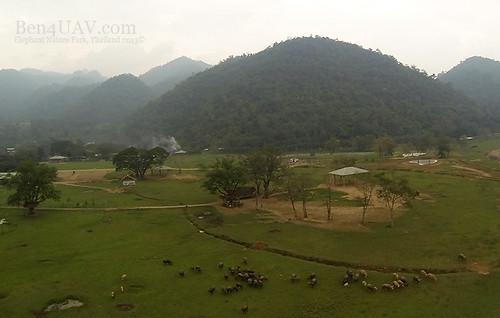 Elephant Nature Park 3