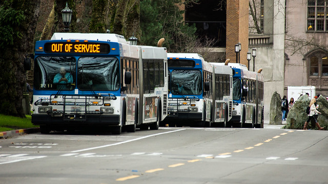 Sleepy suburban buses wait for the bell