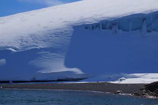 136 King George Island - Zodiaccruise