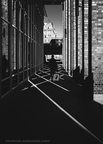 Lines, Street and Cat content - dedpxl01- Fuji X100S