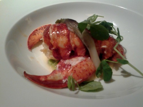 Butter Poached Lobster at Lippi Restaurant Brickell