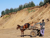 Road Works with Mule, Ethiopian Simien Mountains