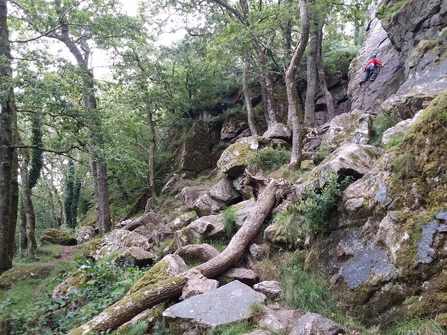 Below Dewerstone Rock