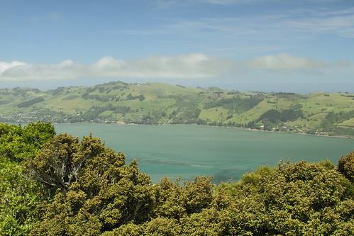 newzealand 2016 southisland dunedin