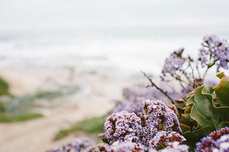 beach_5.22_3_web