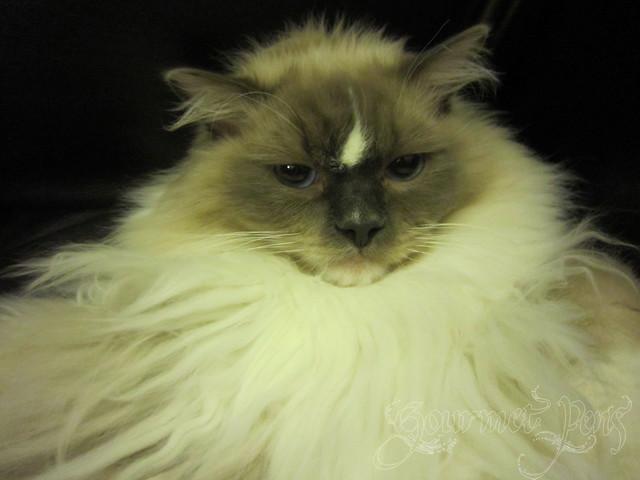 Tyco: Not Impressed.