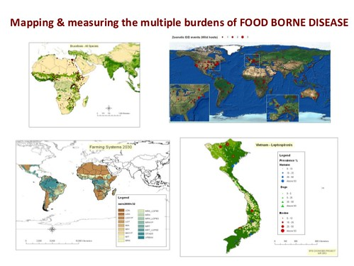 Measuring and mapping the multiple burdens of food-borne disease