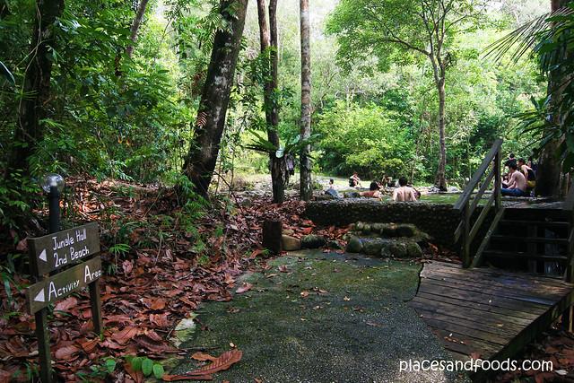 permai rainforest swimming pool