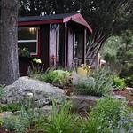 Garden Tour 2013 - House #1