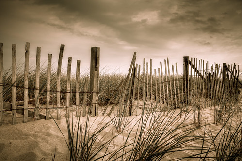 beach nature race fence point landscape ma provincetown dune cape cod
