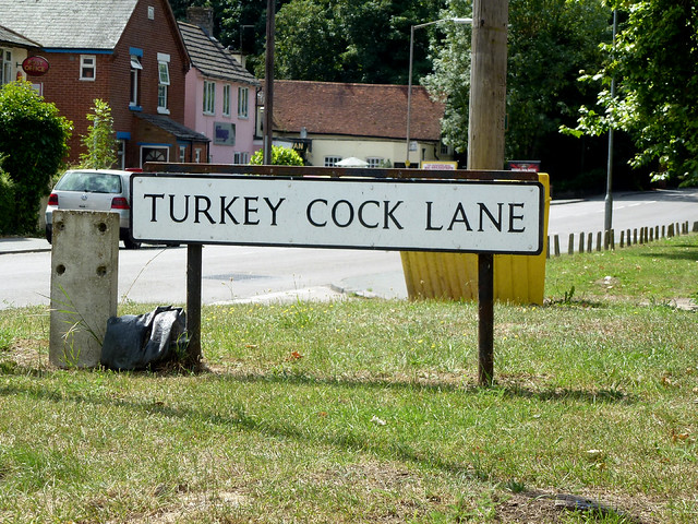 Turkey Cock Lane