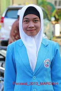 Perawat_2013_MARDIAH