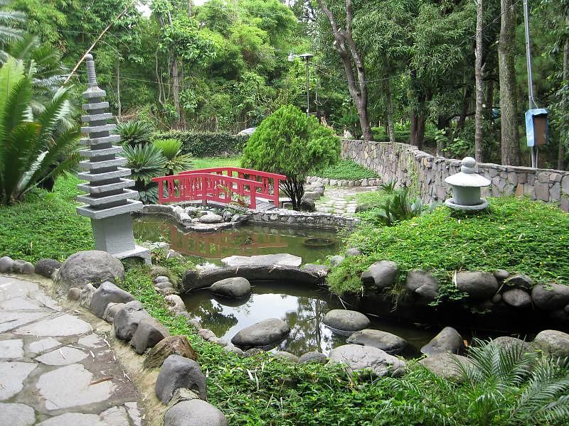 Parque saburo hirao p gina 2 skyscrapercity for Plantas ornamentales para parques