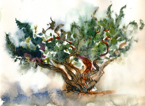 September 2013: Tree