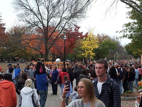Pumpkins & People