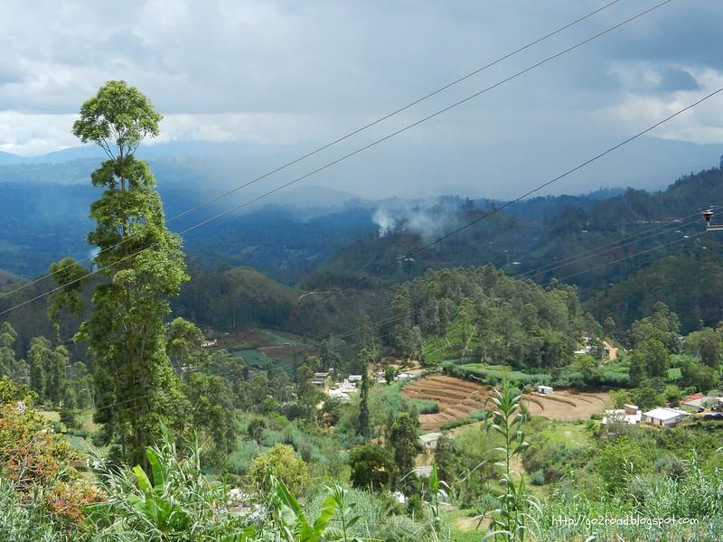 Террасное земледелие Шри Ланка