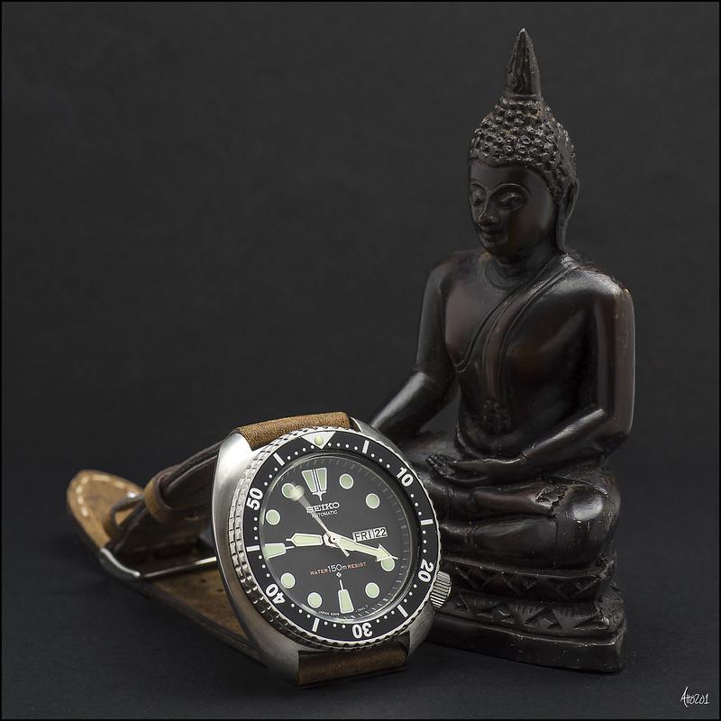6309-7040 Zen
