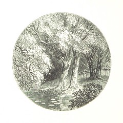 "British Library digitised image from page 188 of ""The Lady of the Forest [A novel.]"""