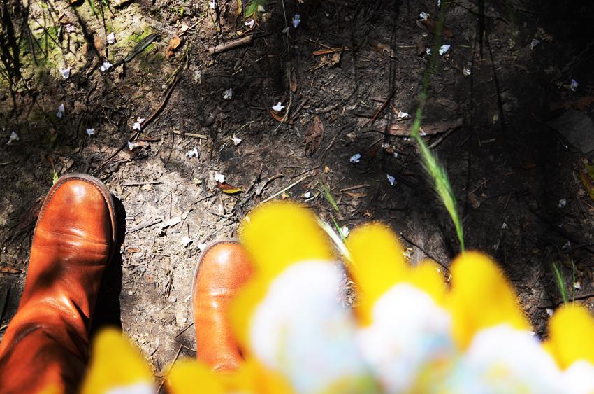 forest-confetti