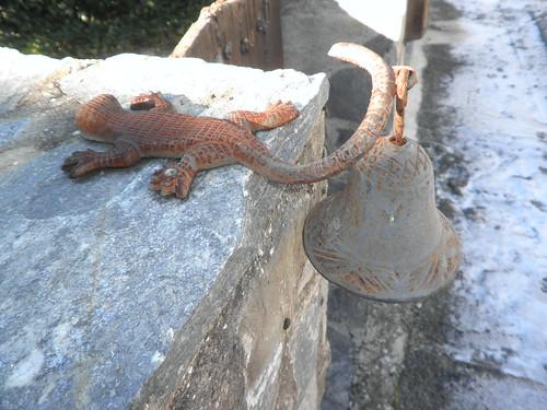 Salamandra con una campana