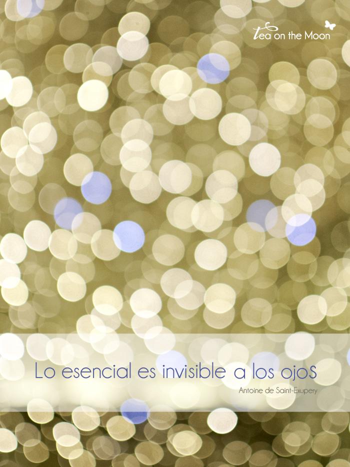 Lo esencial es invisible a los ojos 0