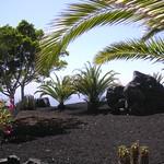 Straßenrandgestaltung auf La Palma
