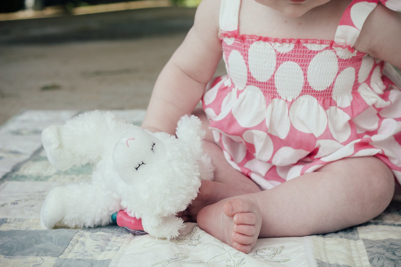 baby plays with toy sheep