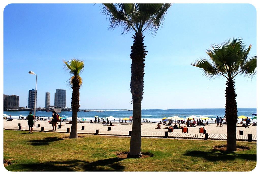 iquique beach promenade chile