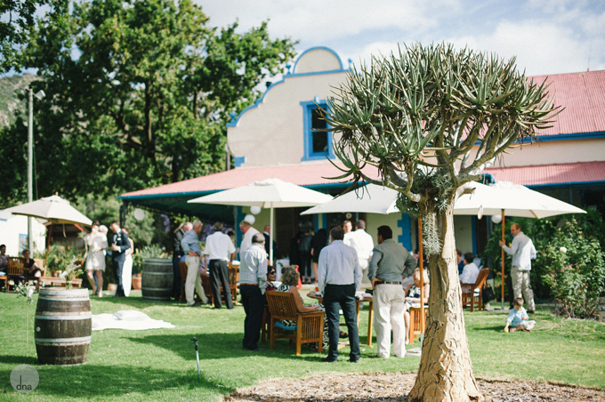 pre-drinks-Robyn-and-Grant-wedding-Fynbos-Estate-Malmesbury-South-Africa-shot-by-dna-photographers-118