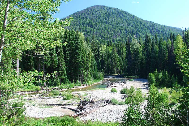 Blowdown, Manning Provincial Park, Cascade Mountains, Hope, British Columbia, Canada