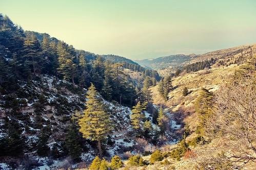 Las Sierras de Cazorla, Segura, and las Villas Nature Reserv