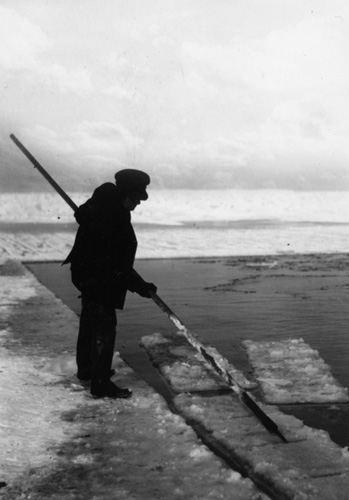 Ice Harvesting 1910