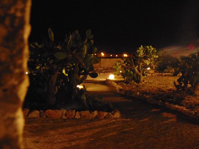 Rutigliano- Parco dei Fichi d'India-1
